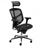 Scaun Ergonomic Enjoy